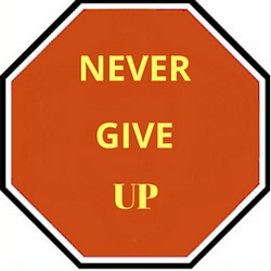 Stop Never Give Up