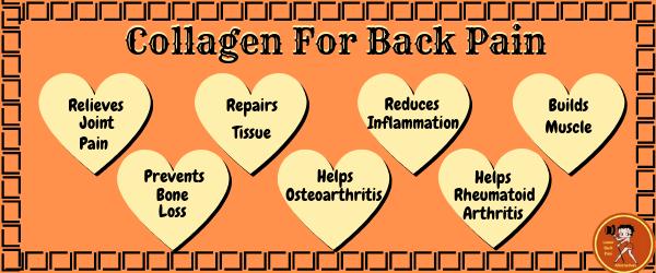 Best Collagen Supplement